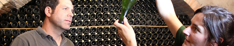 descregut vinos