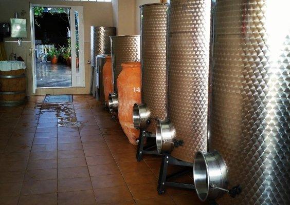 vinos bodegas Pigar