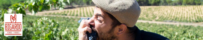 Vinos toro Bigardo